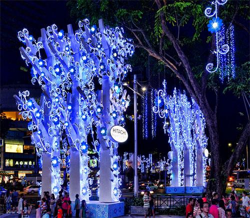 X'mas Street Decor: Christmas Blooms In Singapore