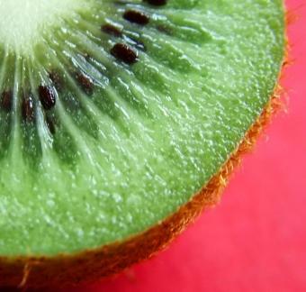 Kiwi fruit for anti-aging
