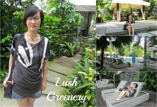 Lush Greenery Grand Hyatt Singapore