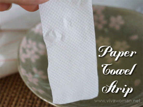 Paper Towel Pore Strip